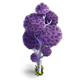 Res mellow tree 8 purple.png