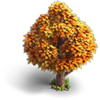 Res orange tree autumn