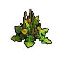 Resource-Milkweed 2