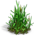 Res cattail 1.png