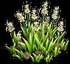 Resource-Iris 3