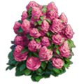 Res bush pink flowers 3.png