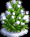 Res juniper snowy 1.png