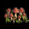 Wild crop (resource)