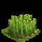 Wheat plant ph2