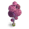 Res mellow tree 8 pink.png