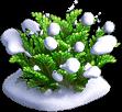 Res juniper snowy 2.png