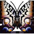 Coll butterflies velvet