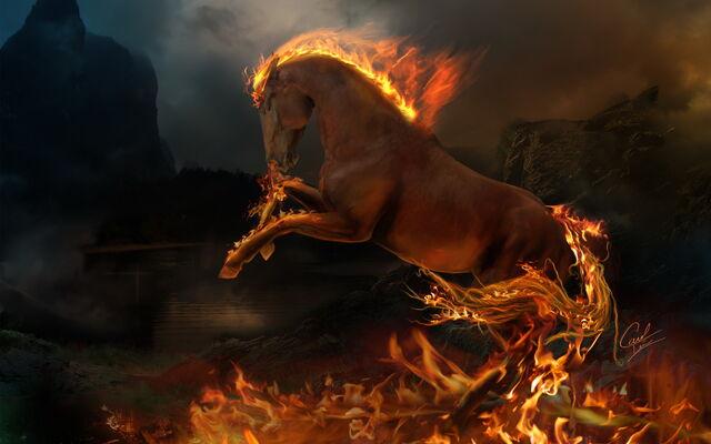 File:Horse2.jpg