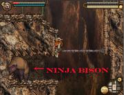 Ninja Bison