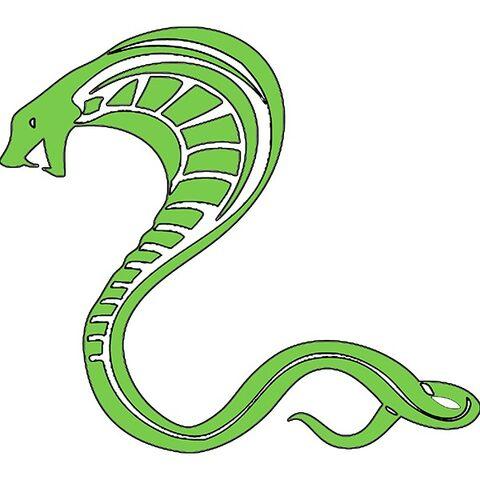 File:Cobra Insignia.jpg