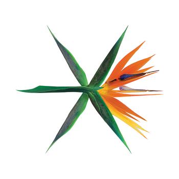Digital (Korean)