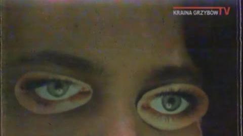 Kraina Grzybów TV - końcówka programu 21.09.1994r