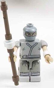 Arashikage Ninja2