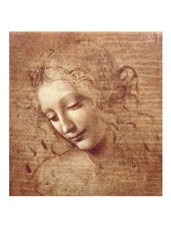 File:Leonardo-da-vinci-female-head-la-scapigliata-c-1508.jpg