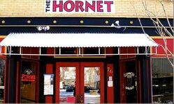 The-hornet-door