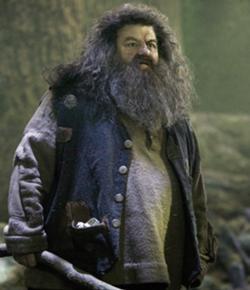 File:Hagrid.jpg