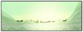 Thumbnail for version as of 20:42, November 4, 2012
