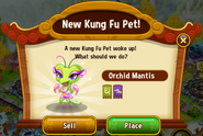 New KFP - Orchid Mantis