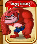 AngryBulldogAdult