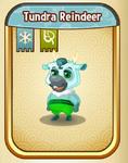 TundraReindeerBaby