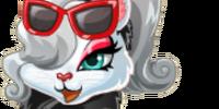 Shopaholic Kitty