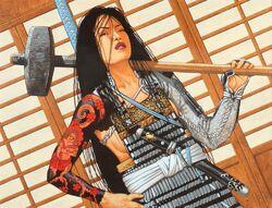 Hida O-Ushi