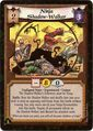 Ninja Shadow-Walker Exp2-card.jpg