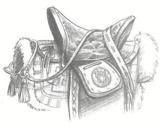 File:Saddle.jpg