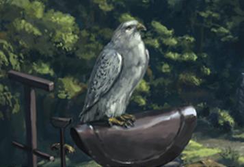 File:Falcon 2.jpg