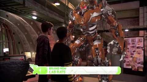 New Episodes! - Spike's Got Talent & Leo vs