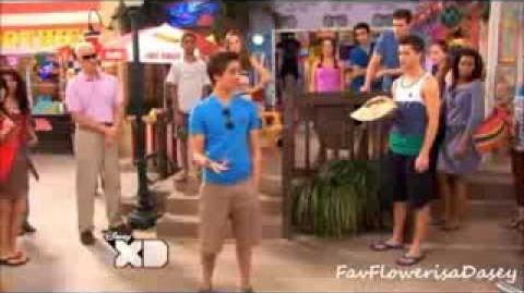 Lab Rats-Brase-Exotic