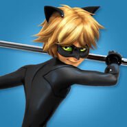 Miraculous-chat-noir-about-web