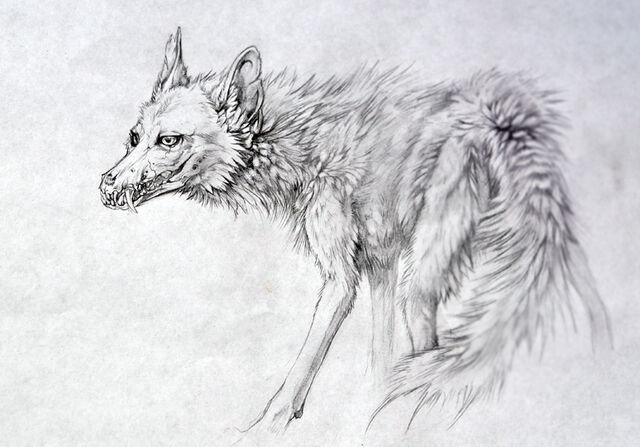 File:Coyote beast.jpg
