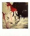 Nobuyoshi Araki Polaroid 11