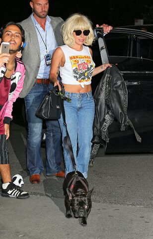 File:Back to her apartment in NYC (June 19) (2).jpg