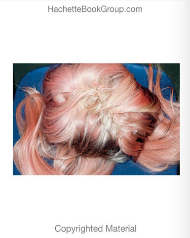 File:Lady-Gaga-Terry-Richardson-Book-16.jpg