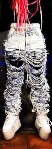 File:Dog - Jeans.jpg