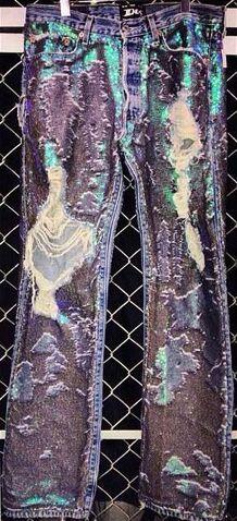 File:Dog - Glitter jeans.jpg