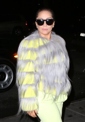 File:12-1-14 Arriving at her apartment in NYC 002.JPG