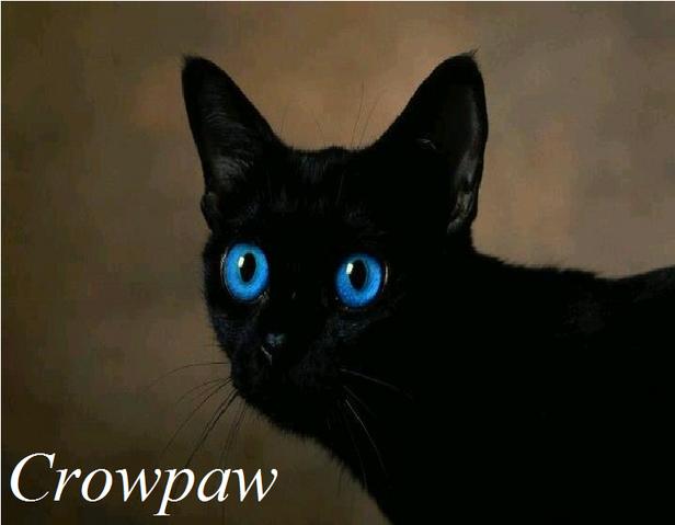 File:Crowpaw.png