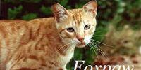 Foxpaw