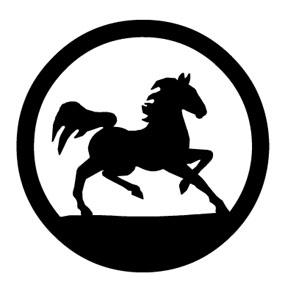 Horse trotting circle
