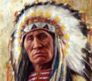 Lakota Ways Wikia