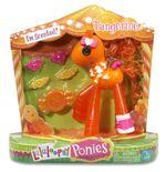 Tangerine pony