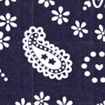 File:Sunny Pattern.png
