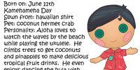 Aloha Tiki Wiki