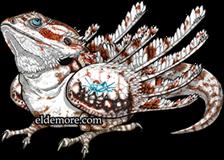 Bearded Rune Dragon