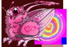 Firefly Rune Dragons5