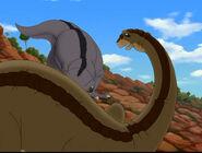 Cool Gray Sharptooth pushing Pat